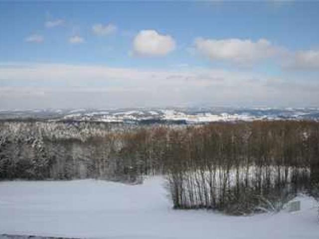 """Gasthof """"Zur Platte"""" - Waldrestaurant und Pension - Winter"""